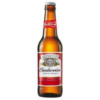 CLEARANCE - BUDWEISER BEER - BOTTLE
